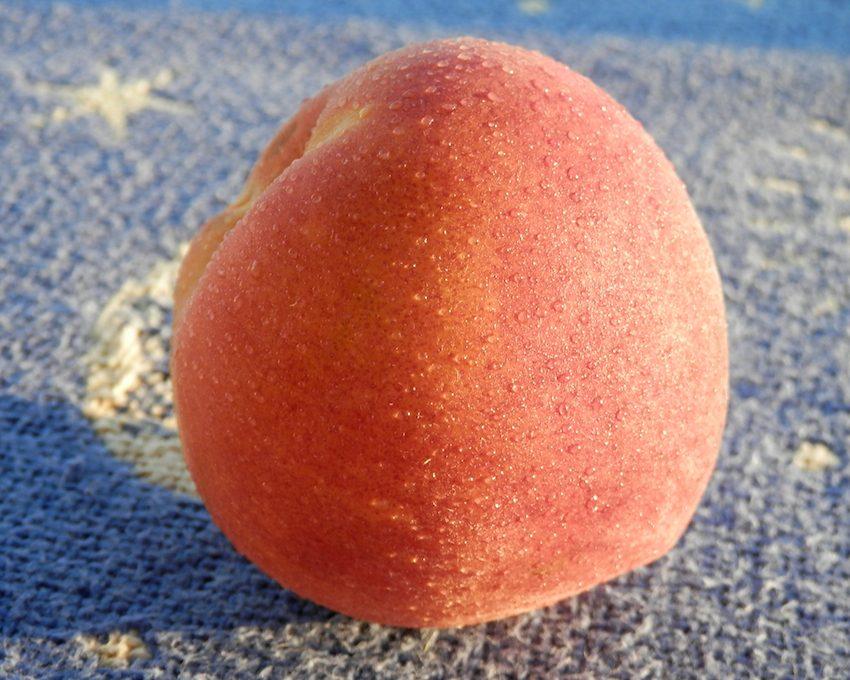 close up of a ripe Georgia peach